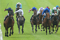 1000 guineas betting odds